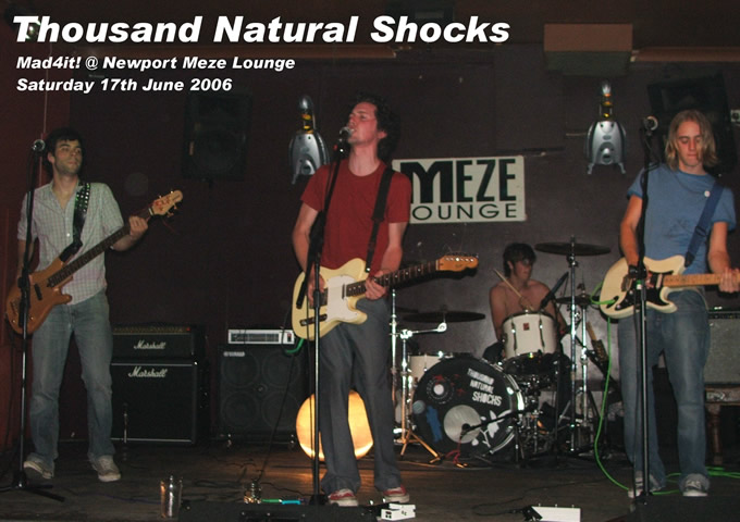 click here to visit Thousand Natural Shocks on-line